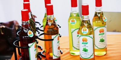 Vinhos e Licores