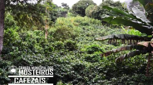 7 MARAVILHAS NATURAIS DOS MOSTEIROS